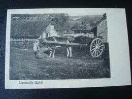 LIGNEUVILLE Avant  1906 - Malmedy