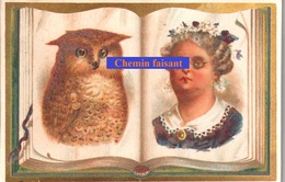 Chromo Thème Ressemblance Humains & Animaux ; HIBOU  -  Scans Recto-verso - Chromos
