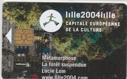 CARTE PIAF..15 E   LILLE 2004  . - France
