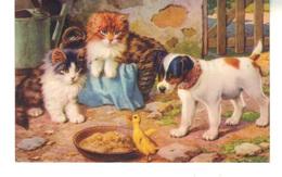 CPSM -   2 Chats, Un Chien Et Un Petit Canard - Cats