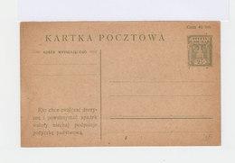 Pologne. Entier Postal 25 F. Carte De 1920. (537) - Entiers Postaux
