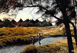 Afrique  En Couleurs -Village Africain African Village (B)  (enfants) ( Editions :HOA-QUI   N°4050 ) -*PRIX FIXE - Postcards