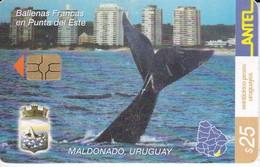 Nº 253 TARJETA DE URUGUAY DE UNA BALLENA (WHALE) - Uruguay