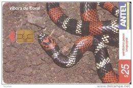 Nº 340 TARJETA DE URUGUAY DE UNA VIBORA DE CORAL (SERPIENTE-SNAKE) - Non Classificati
