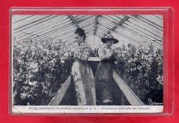 91-CPA VERRIERES LE BUISSON - ETABLISSEMENTS VILMORIN-ANDRIEUX - Verrieres Le Buisson