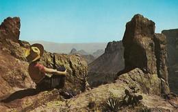 CARTE POSTALE ORIGINALE DE 9CM/14CM : BIG BEND NATIONAL PARK THE SOUTH RIM OF THE CHISOS MOUNTAINS WEST TEXAS  USA - Big Bend