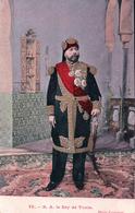 Tunisie, S. A. Le Bey De Tunis, Naceur Bey (79) - Tunisie