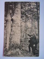 Averbode Le Mariage (chène - Hêtre Gelopen 1918 Uitg L. Defives-Bogaert - Scherpenheuvel-Zichem