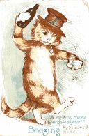 AUSTRALIAN POSTCARD GATO CAT BOOZING ILLUSTRADOR  VSM SERIES 1906 - Gatos