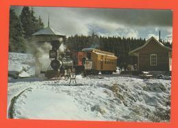 PL/9 CHEMIN DE FER DE LA LOGE DES GARDES ENTRE ROANNE ET VICHY PAR LA MONTAGNE BOURBONNAISE / écrite 1974 Timbre Poste - Trains