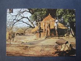 CPM ZIMBABWE - ZAMBESI FISHCATCH - Simbabwe