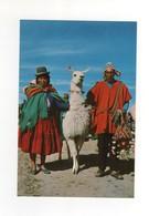 "N° 215  "" Altiplano "" , Neuve - Bolivie"
