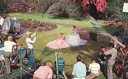 CARTE POSTALE ORIGINALE DE 9CM/14CM : A MOVIE SET MAKING MOVIES IN HOLLYWOOD FILM CAPITAL OF THE WORLD  CALIFORNIA USA - Los Angeles
