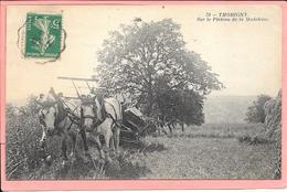 Thorigny - Sur Le Plateau De La Madeleine Gros Plan - Autres Communes