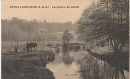 EPINAY SUR ORGE  LA PRAIRIE DU BREUIL - Epinay-sur-Orge