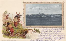 Herzogenbuchsee - Passe-partout-AK Mit Maienkäfern - 1902             (P-147-61120) - BE Berne