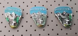 Okreselj 1378 M Mountain Lodge Cottage Alpinism Mountaineering Slovenia Pins - Alpinism, Mountaineering