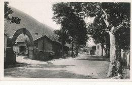 34 // LODEVE    Route De Montpellier, Chantier De Jeunesse N° 24 - Lodeve
