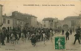 30   GALLARGUES  ARRIVEE DE TAUREAUX SUR LA PLACE DE LA MAIRIE - Gallargues-le-Montueux