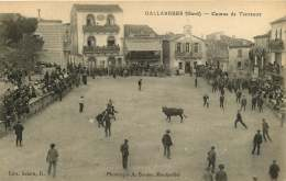 30   GALLARGUES   COURSE DE TAUREAUX - Gallargues-le-Montueux