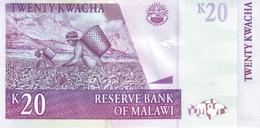 MALAWI P. 52c 20 K 2007 UNC - Malawi
