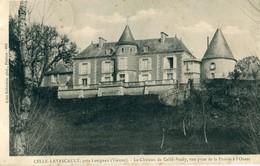86 - Celle L' Evescault : Le Château De Celle-Vezay - Autres Communes