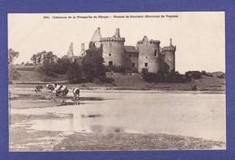 """1623) VANNES Environs Chateau De Succinio Vaches """"DOS SIMPLE"""" (TTB état) - Vannes"""