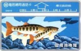= TAIWAN -  D 5019  =  MY COLLECTION - Taiwan (Formosa)