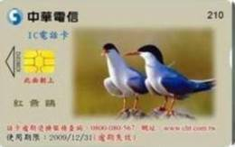 = TAIWAN - IC 06C012  =  MY COLLECTION - Taiwan (Formosa)
