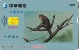= TAIWAN - IC 05C044  =  MY COLLECTION - Taiwan (Formosa)