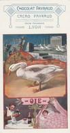 Publicité : CHOCOLAT PAYRAUD : Hors Concours Lyon ( Oie )  Petit Format 14 X 7,3 - Advertising