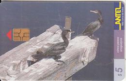 URUGUAY - Birds, Bigua(71a), 09/99, Used - Birds