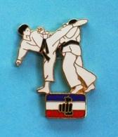 PIN'S //  ** SPORT DE COMBAT / KARATÉ / F.F.K ** - Badges