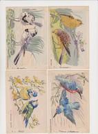 Série De 12 Cpa Dessinées( Martins-pécheurs, Mésanges,bruants,bergeronnettes, Pinsons,verdiers,lavandières...) - Oiseaux