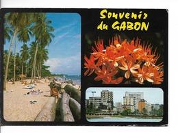 GABON 3 Vues : Plage Du Tropicana, Aspect De Libreville, Amaryllis Haemanthus/ CPM Voyagée 1985 / Usée Soldée !! - Gabon