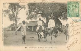 COMMERCANT DE BOEUFS DANS L'ANTANDROY - Madagascar