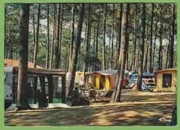 CPSM MOLIETS Camping Au Coeur De La Foret Animation Tente Caravane 40 Landes - Altri Comuni