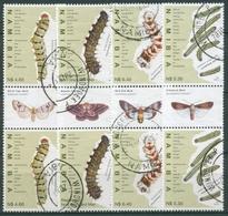 Namibia 2010 Schmetterlingsraupen Zwischenstegpaare 1357/60 ZS Gestempelt - Namibia (1990- ...)