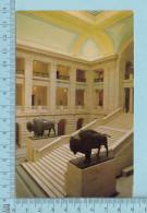 Manitoba  Canada -  Winipeg Grand Staircase Legislative Building, Buffalo, Bison - Postcard Carte Postale - Winnipeg