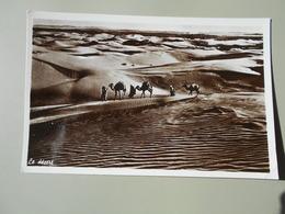 LIBAN LE DESERT  AFFRANCHIE DU LIBAN - Lebanon
