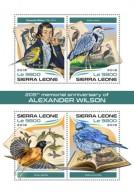 Sierra Leone 2018  S201805 Alexander Wilson Birds - Sierra Leone (1961-...)
