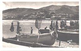 FR66 BANYULS SUR MER - Apa 10 - Canots Pour La Pêche Au Lamparo - Belle - Banyuls Sur Mer