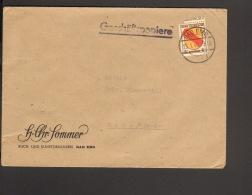 Frz.Zone 8 Pfg.Wappen Auf Geschäftspapiere 1946 Der Fa.Sommer Bad Ems Einkreis-Stegstempel Umschlag Offen - Französische Zone