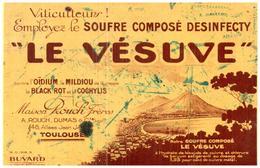 VI V/Buvard Viticulteur Le Vésuve  (Format 21 X 14) (N= 1) - Blotters