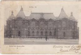Lille - Palais Des Beaux-Arts - 1902 - Lille