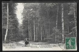 CPA 61 - Saint-Marc-de-Réno, Forêt De Réno - Route Dans La Forêt - Autres Communes
