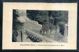 30 SALINDRES   Pont En Bois Et Escalier De La Gare - France