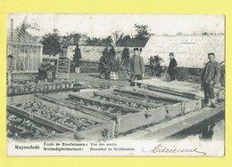 * Ruiselede - Ruysselede * (Uitgever Standaert) école De Bienfaisance, Vue Des Serres, Enfants, Jardin, School, TOP - Ruiselede