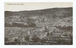 Wales Postcard Newtownfrom Bryn Bank Rp Unusd Valentines - Montgomeryshire