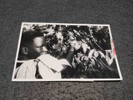 ANTIQUE PHOTO POSTCARD UGANDA TRIBAL BOY ON TREE CIRCULATED 1958 - Uganda